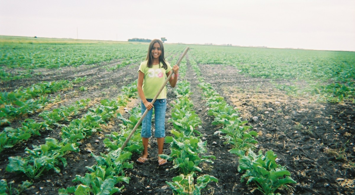 A young US farmworker (Photo courtesy of the Association of Farmworker Opportunity Programs)